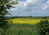 Based in the tranquil heartland of rural Norfolk